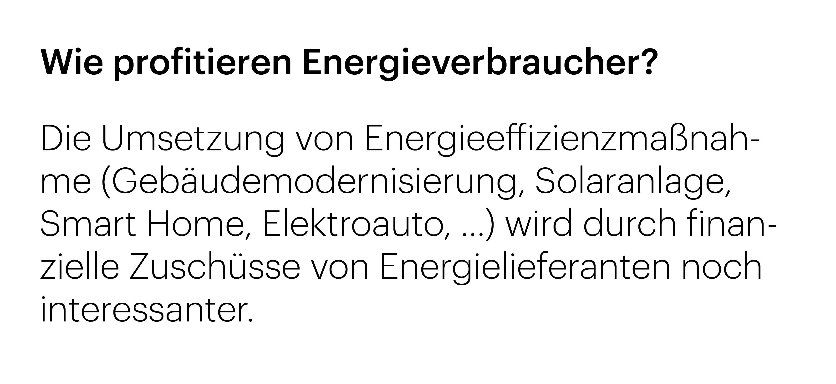 Energieauditor_Verbraucher